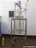 TFD-50L50升双层玻璃反应釜