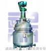 威海新元电加热反应釜