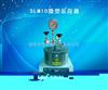 SLM10微型反应釜