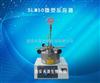 SLM50微型反应釜